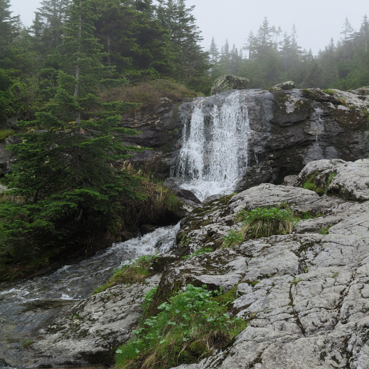 20180602-Ammonoosuc-waterfall