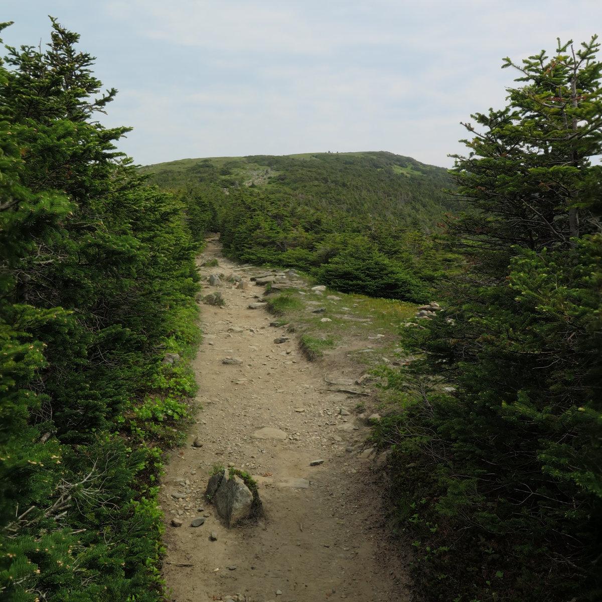 Approach-Trail-20180618