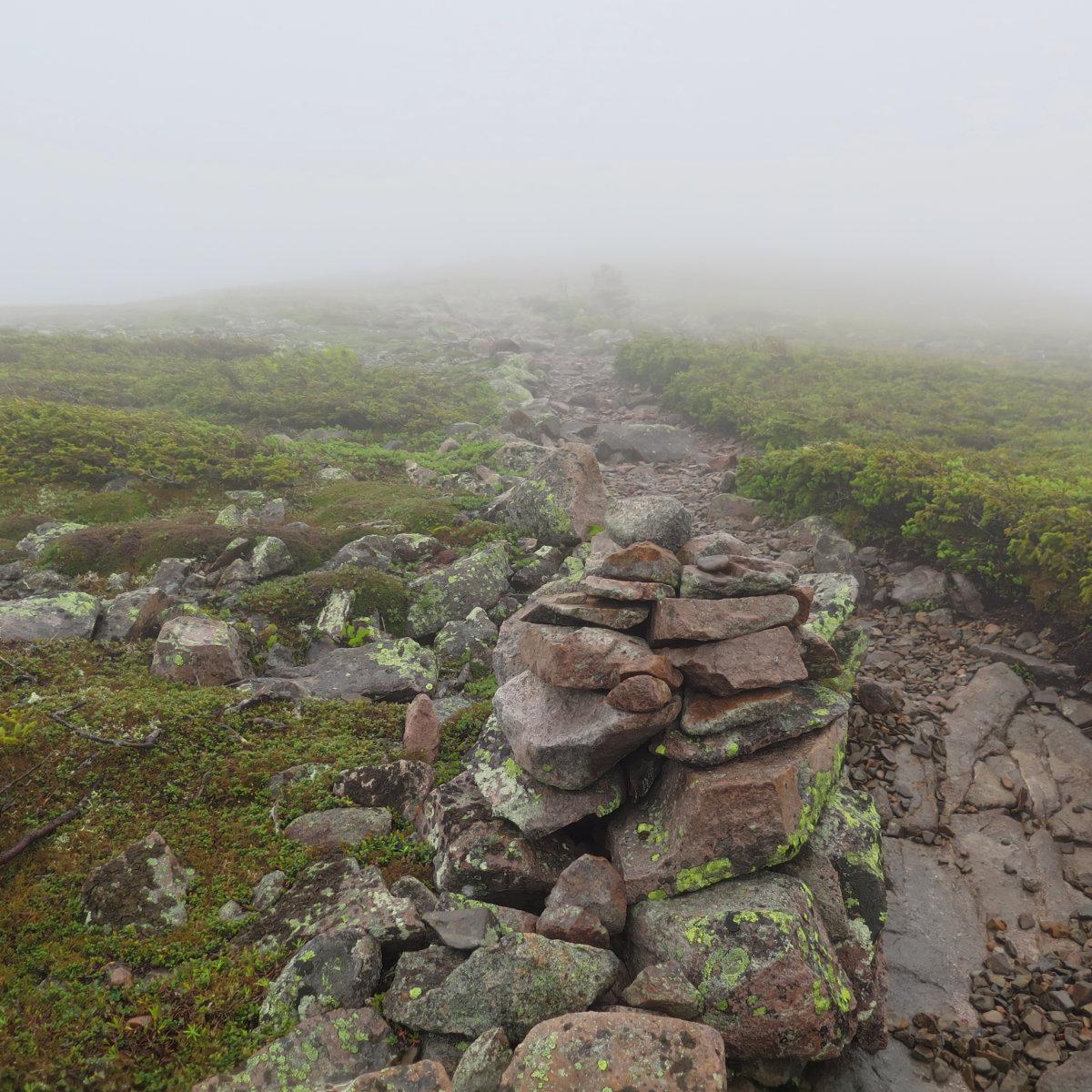 Guyot-Trail-20180614