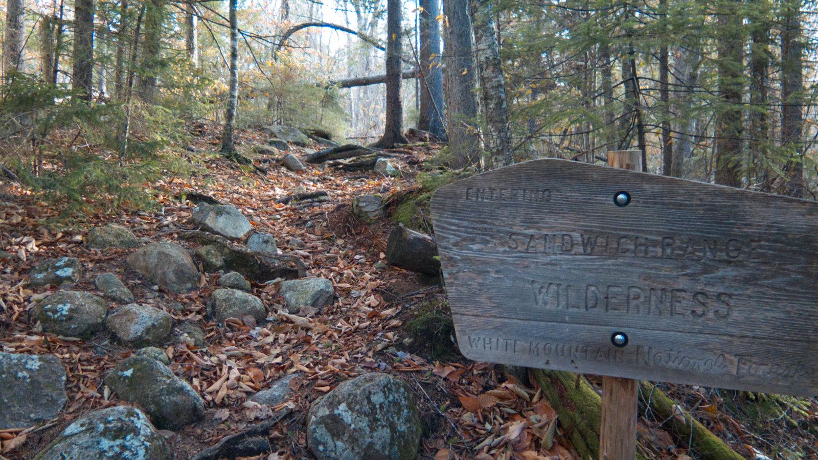Jennings-Peak-Sandwich-Wilderness-20181108