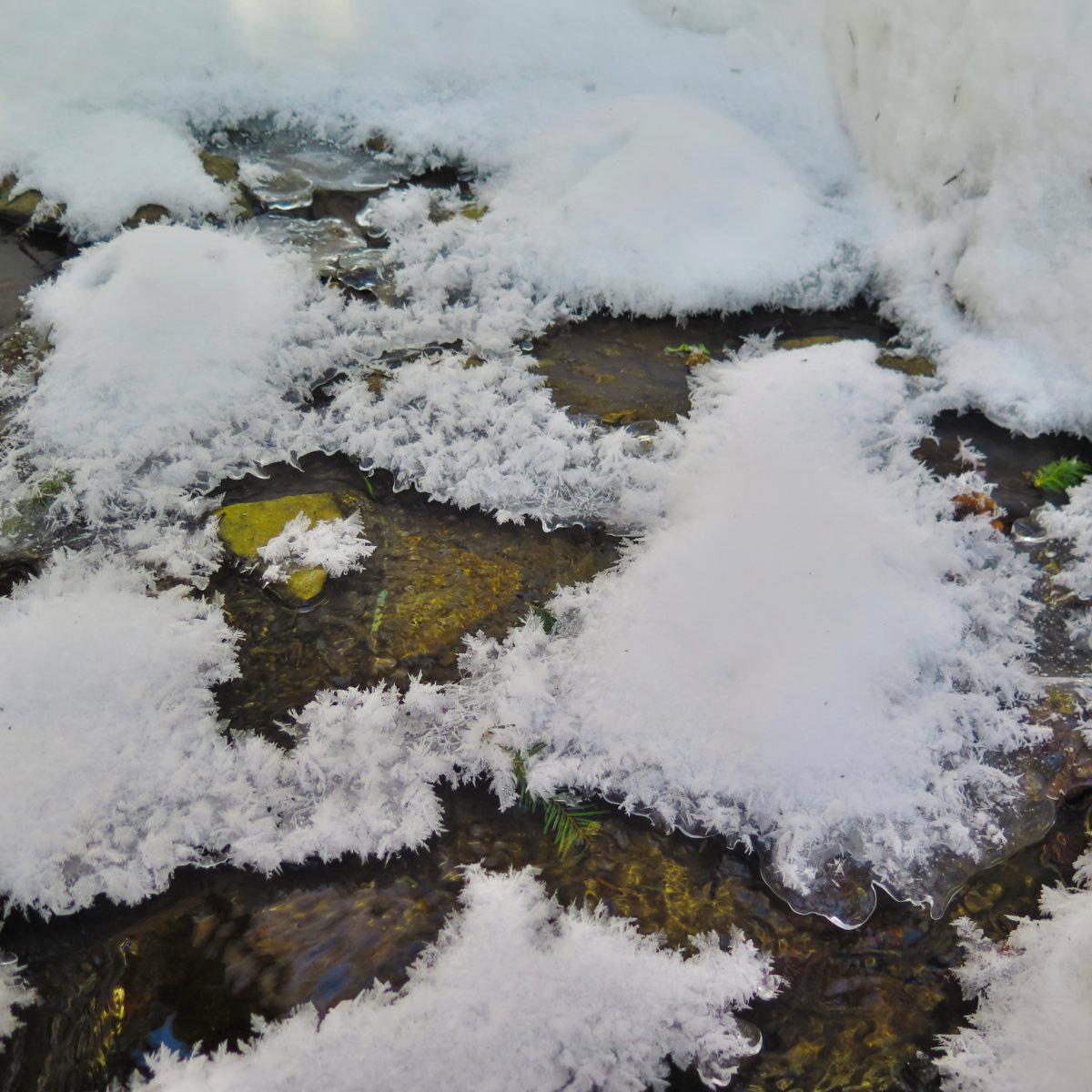 Moosilauke-Ice1-20190117