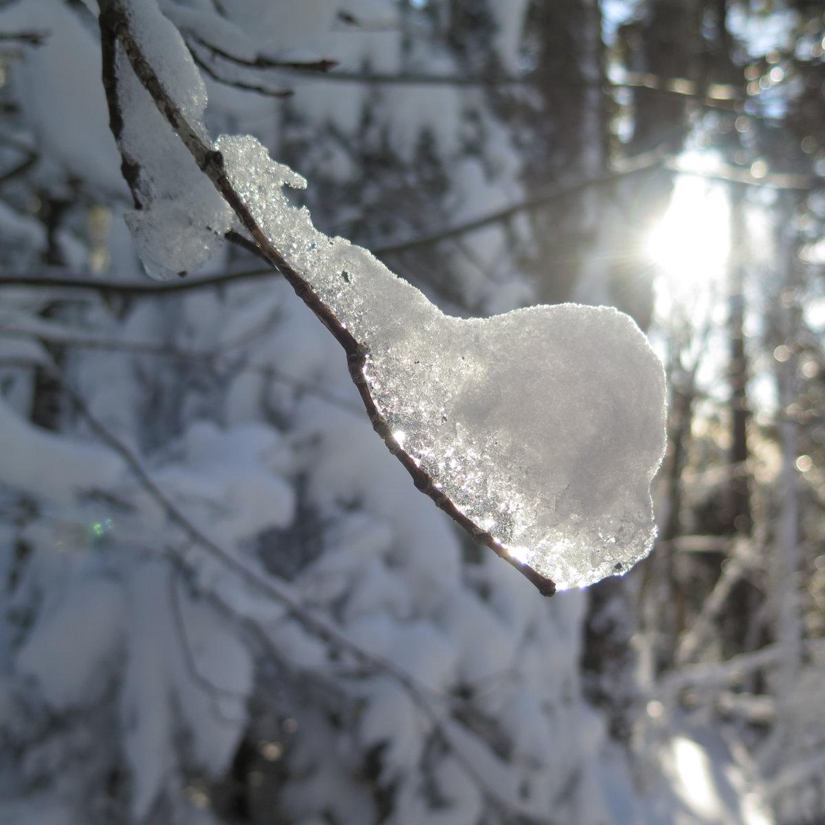 Moosilauke-Ice2-20190117