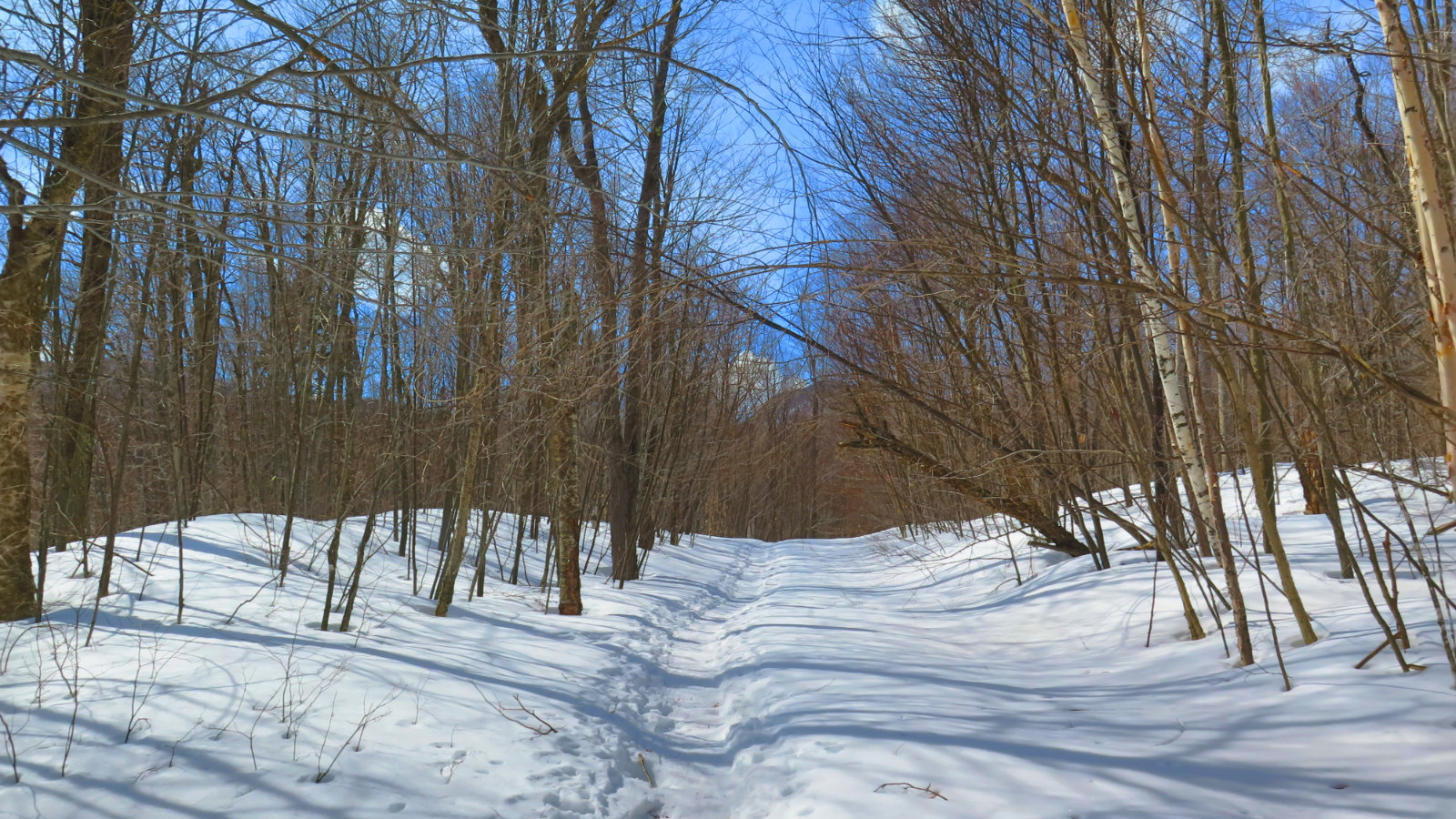 Cabot-Trail-20190320