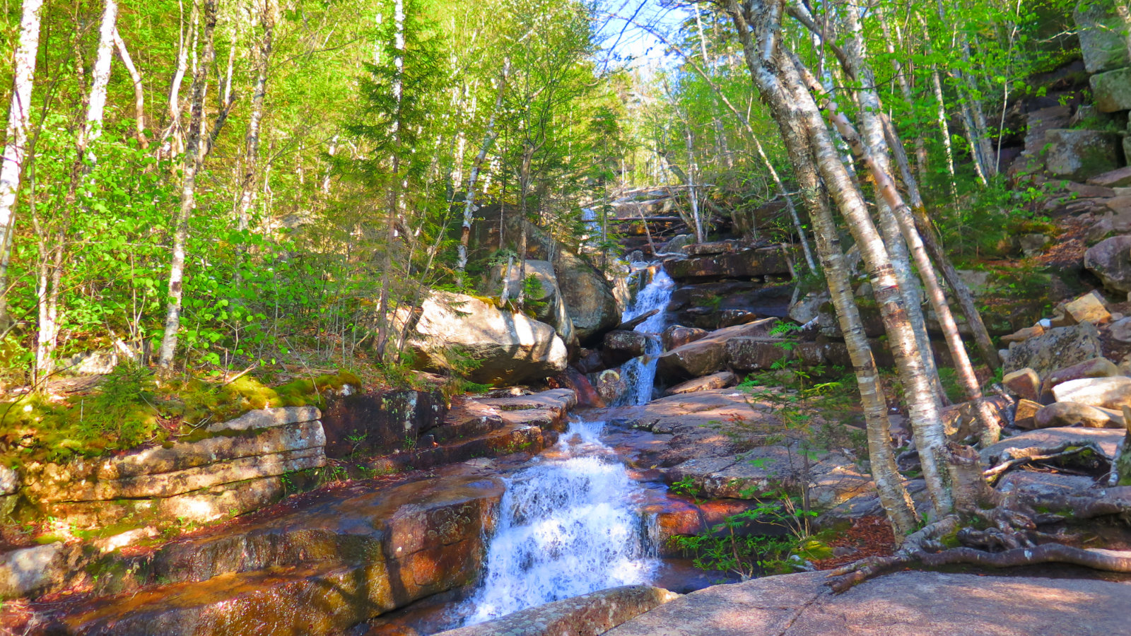 Chocorua-Champney-Falls-2-20190530