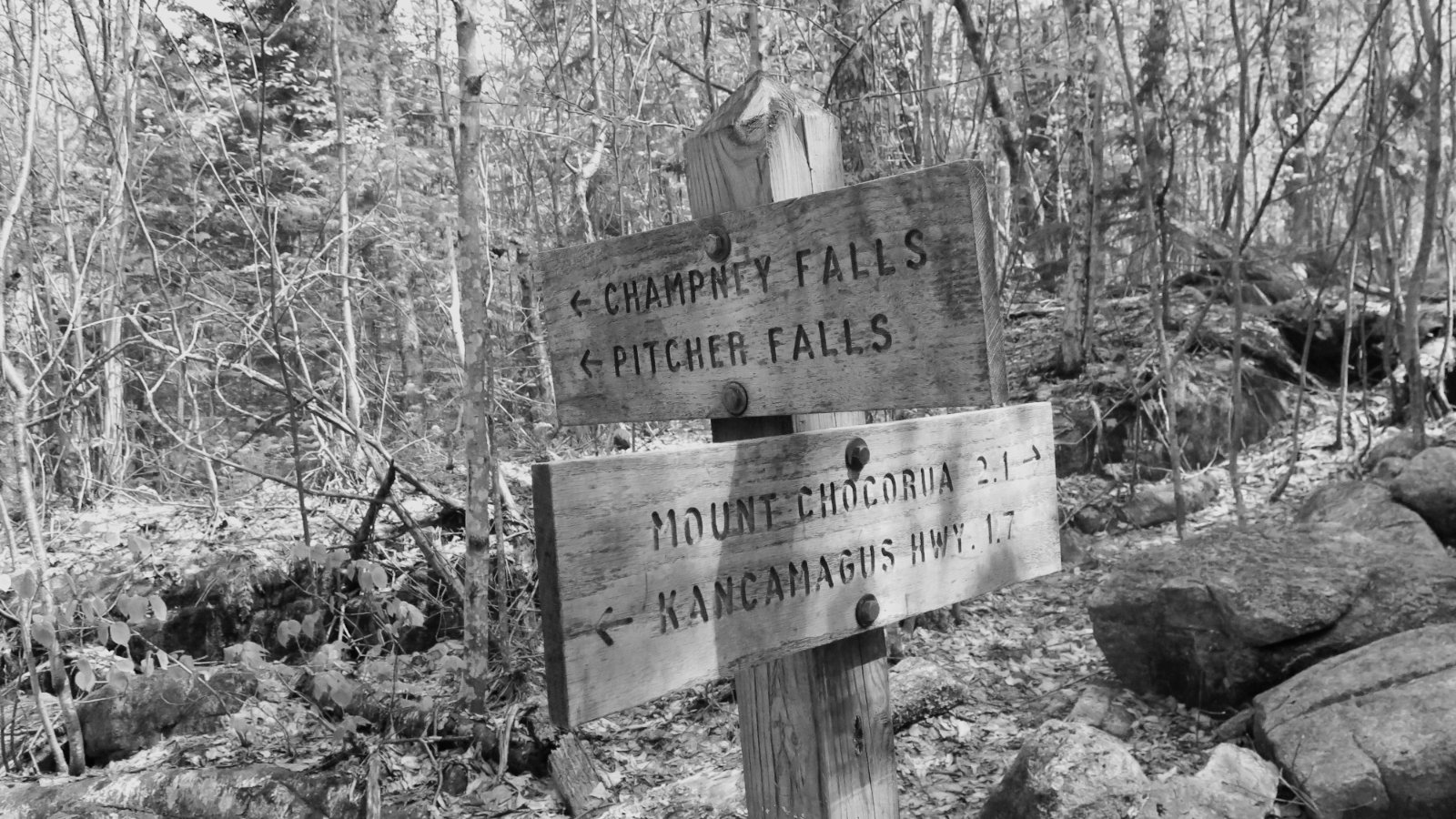 Chocorua-Sign-20190530