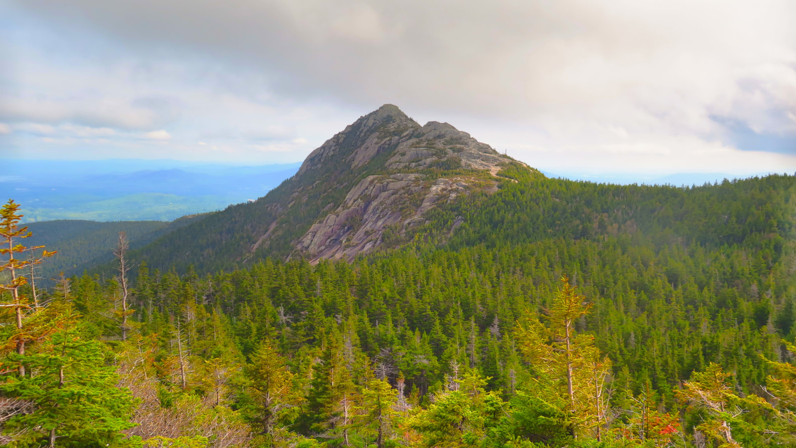 Chocorua-Summit-20190530