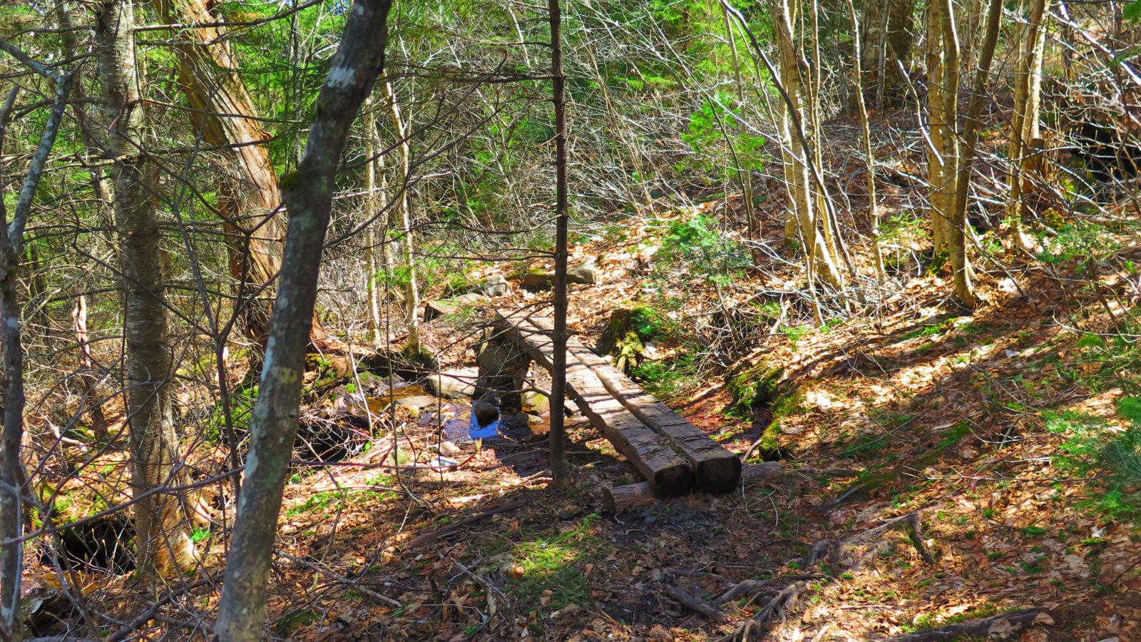 Trail3-Mt-Cube-20190509