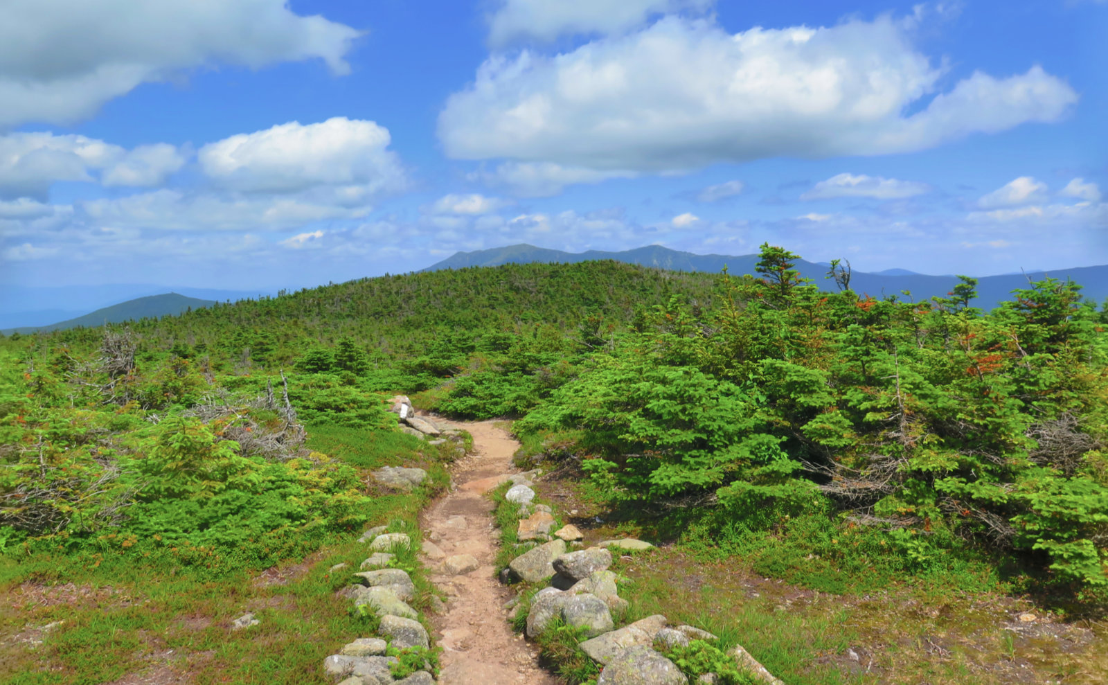Kinsman_Franconia_Ridge_From_AT_20190713