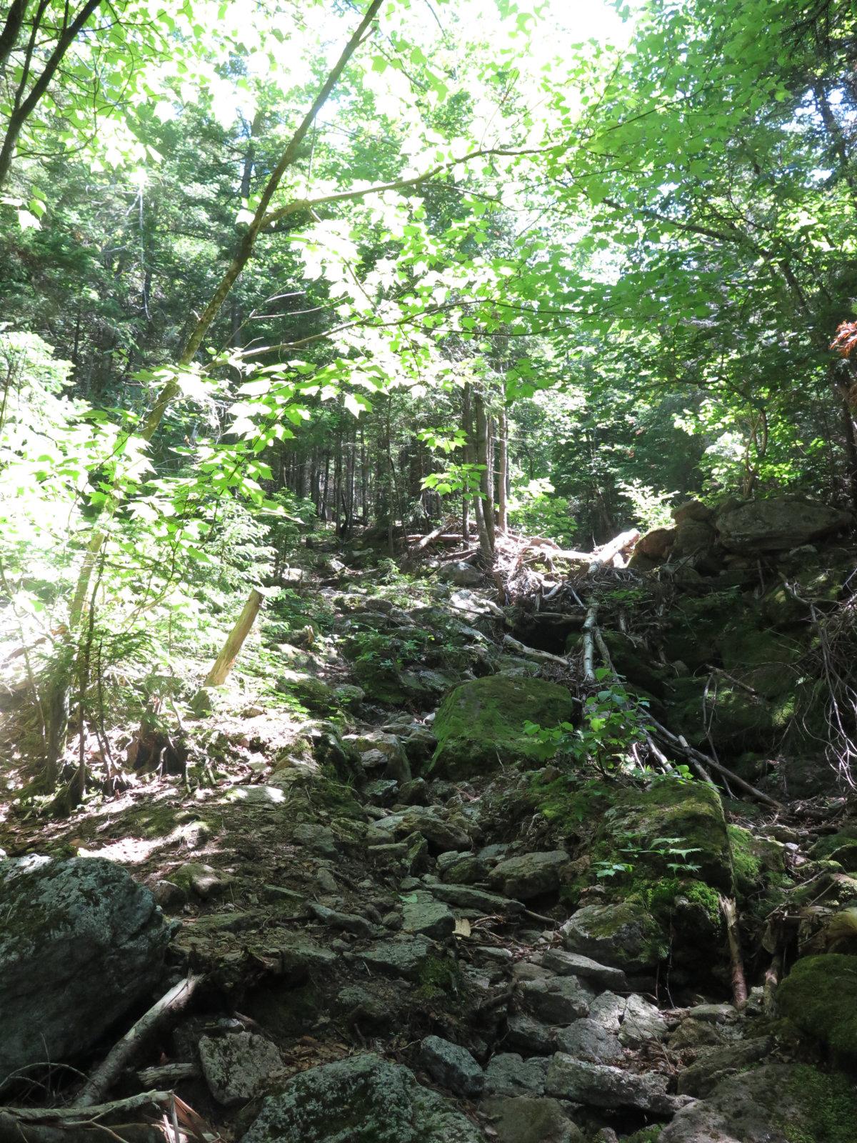 Low_Trail_Rough_Tripyramid_20190720