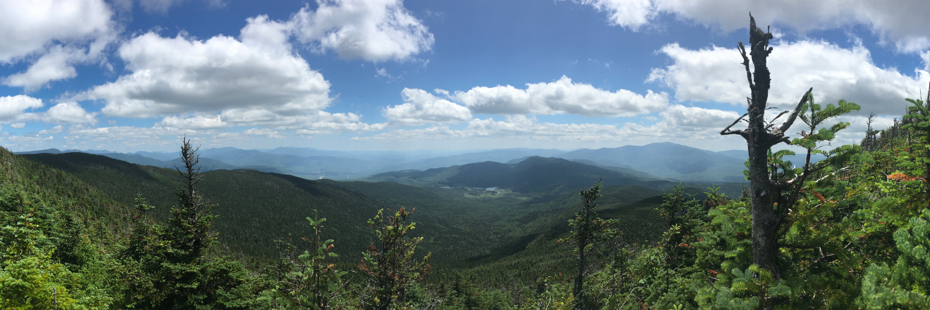 Moosilauke_From_Kinsman_20190713