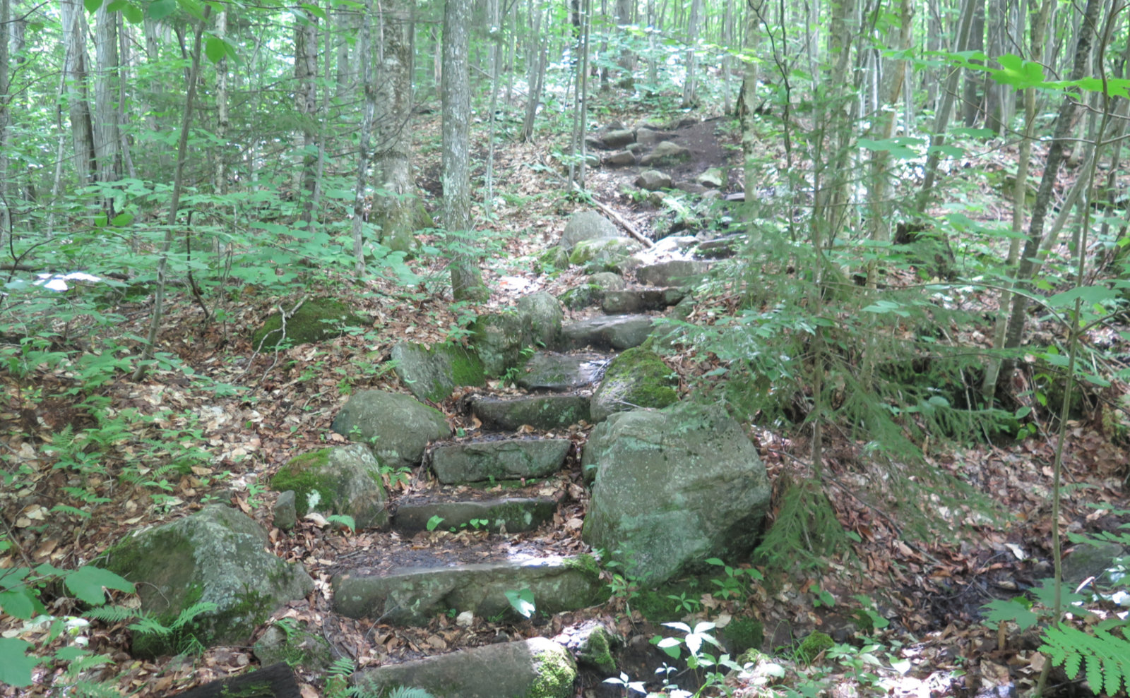 Stone_Stairs_Cabot_20190718