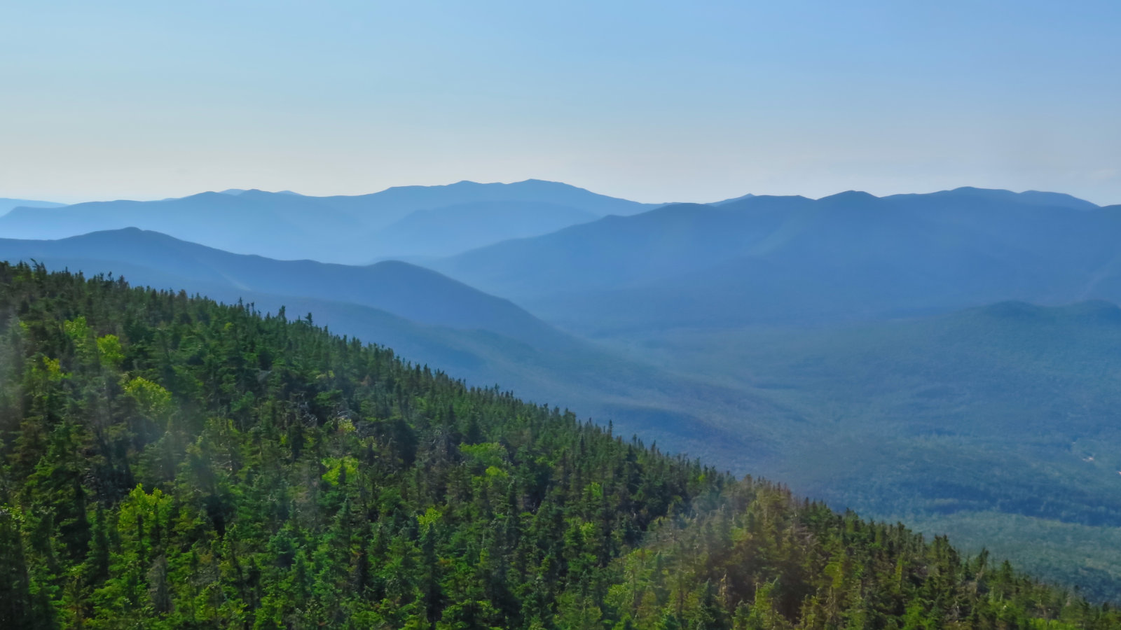 Pemigewasset_Wilderness_Carrigain_20190803