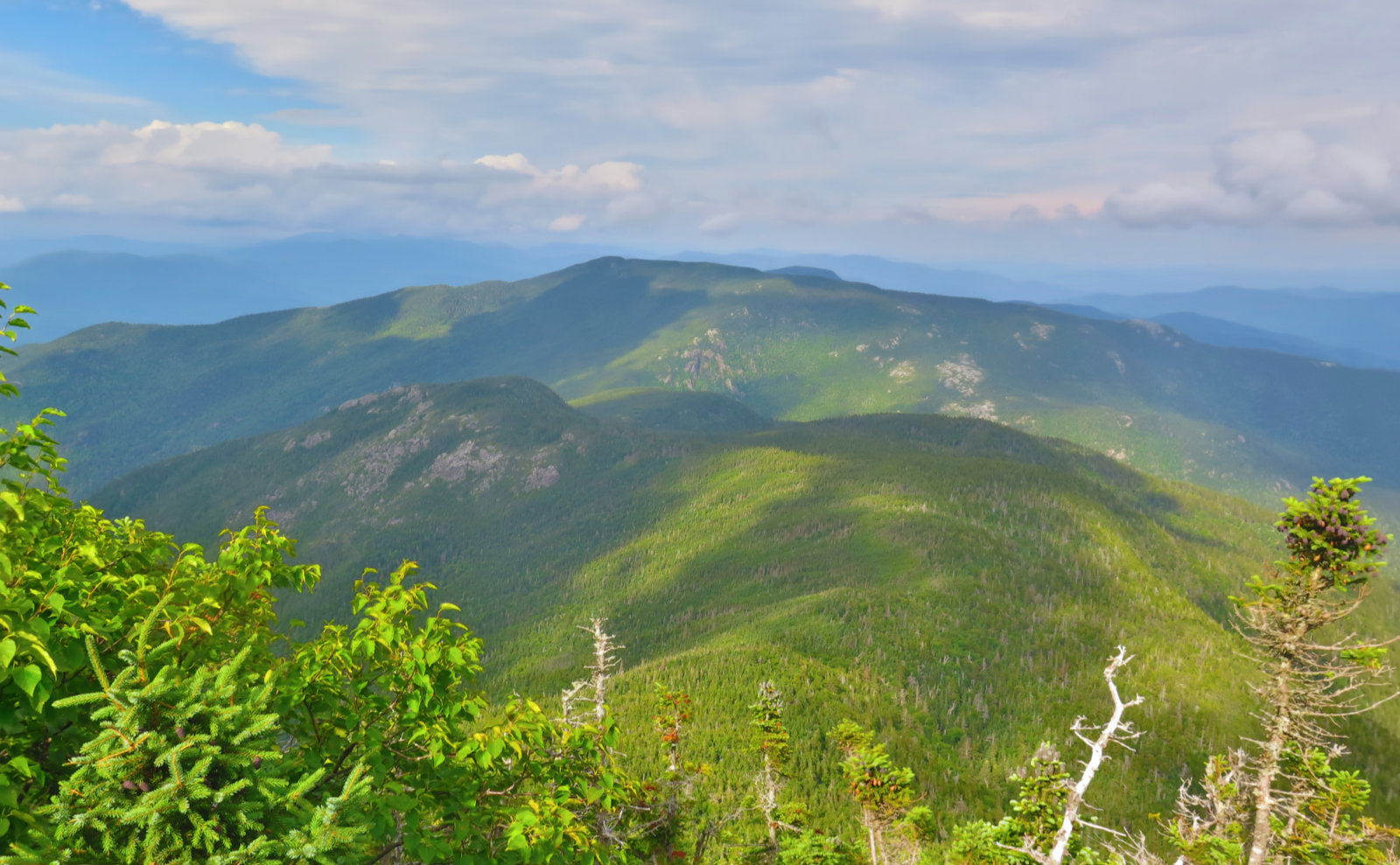 View-North-Carter-Ridge-20190822