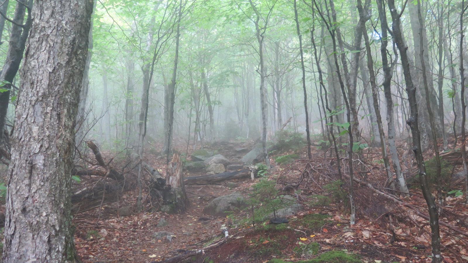 Fog-Whiteface-Passaconaway-20190912
