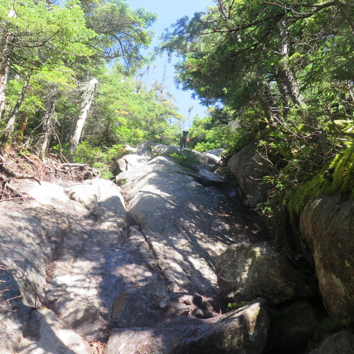 Steep-Trail-Webster-WJPE-20190905
