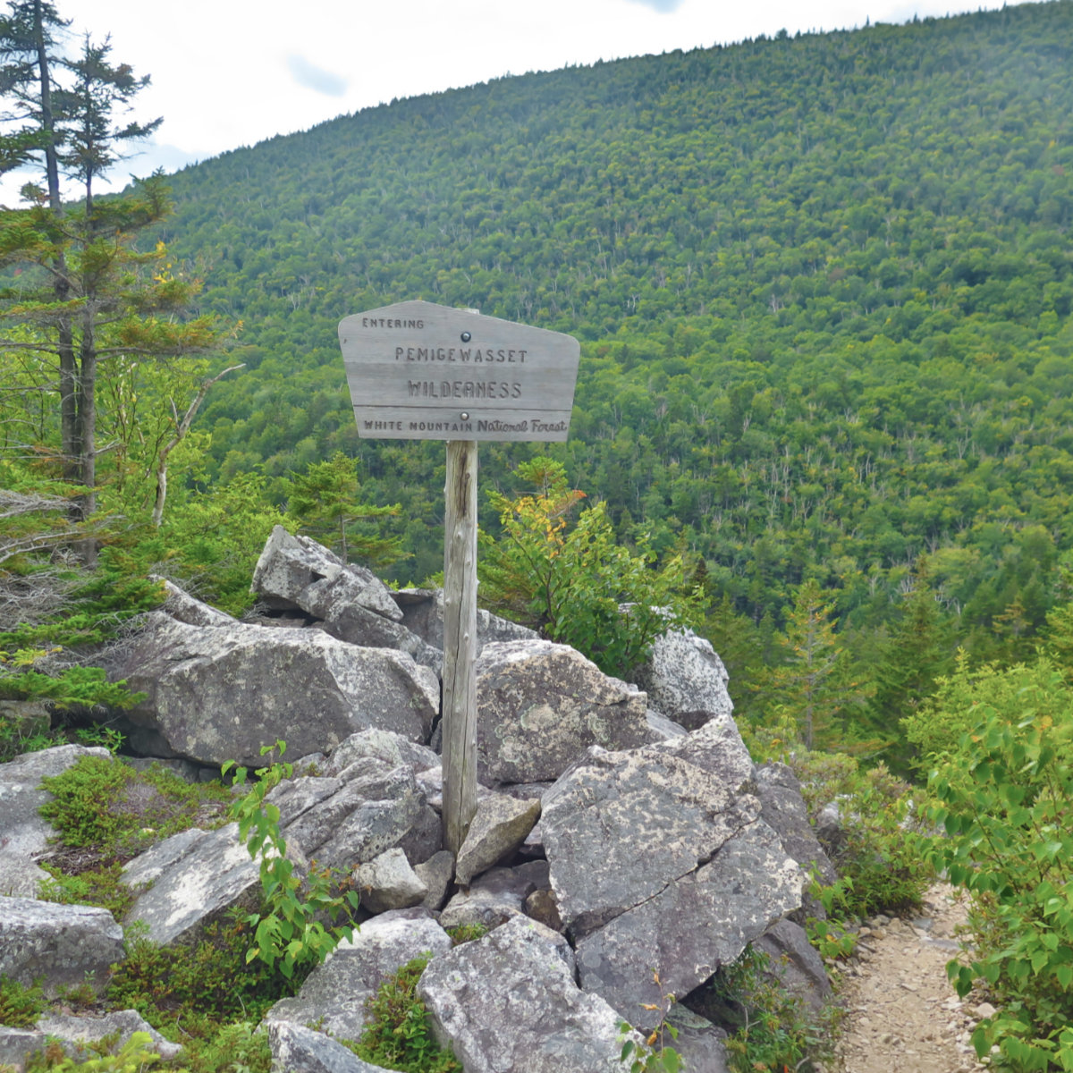 Zeacliff-Trail-Pemigewasset-Wilderness-20190907