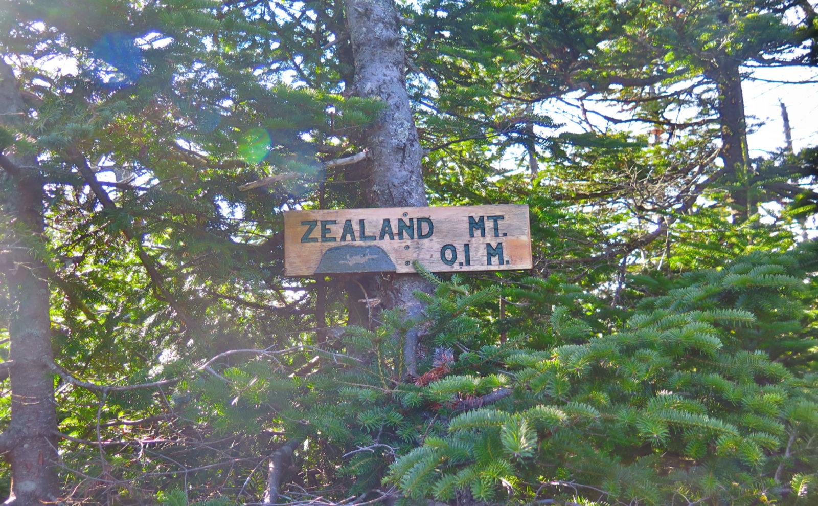 Spur-Sign-Zealand-20191024