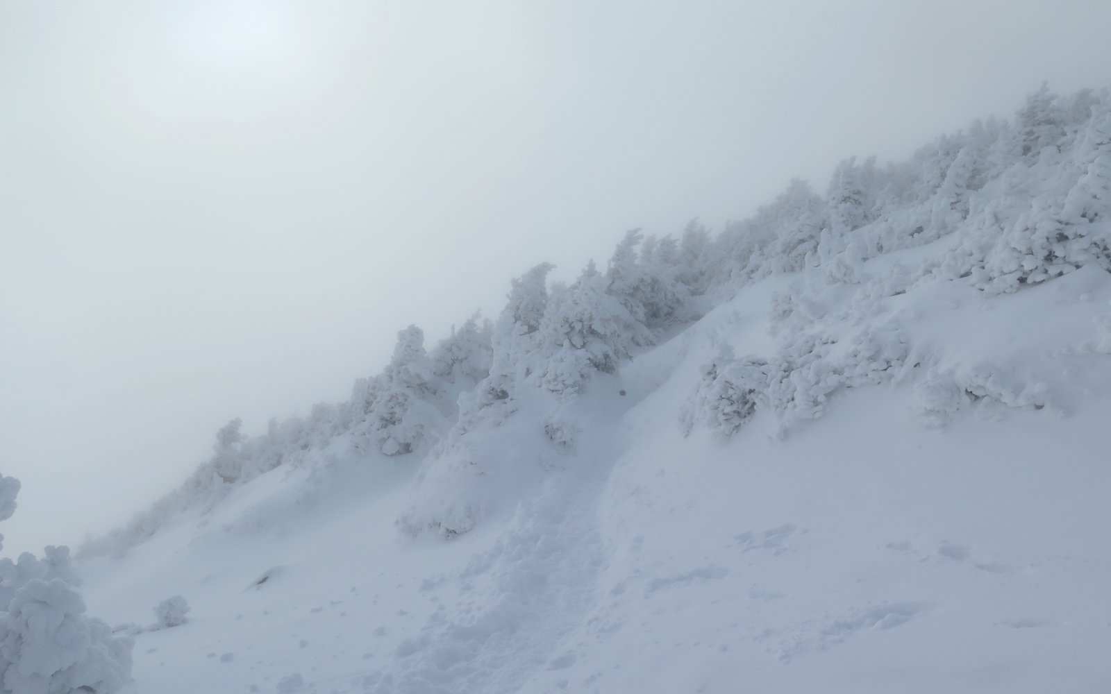 Kinsman-Ridge-Uphill-Cannon-20191130