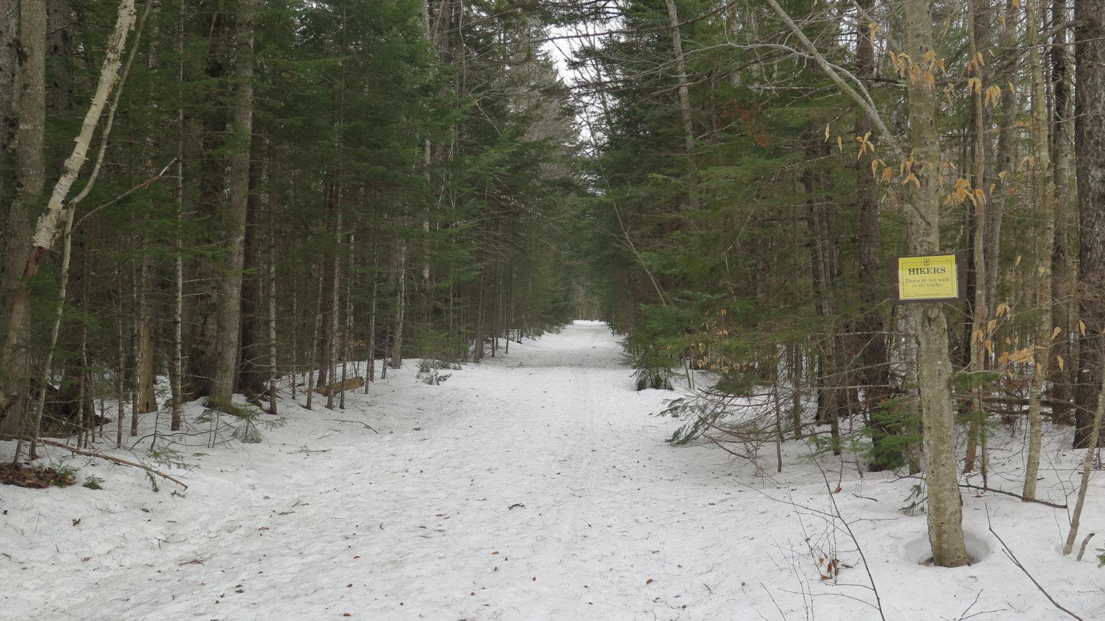 Greeley-Ponds-Trail-20200311