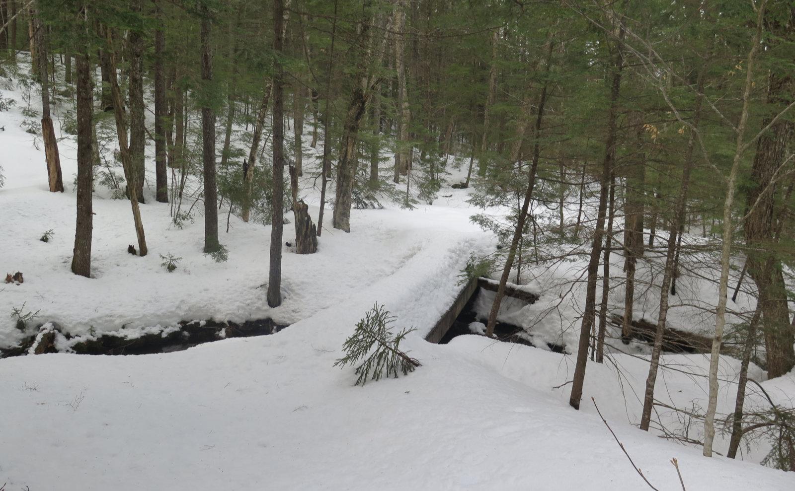 Oliverian-Trail-Bridge-20200326