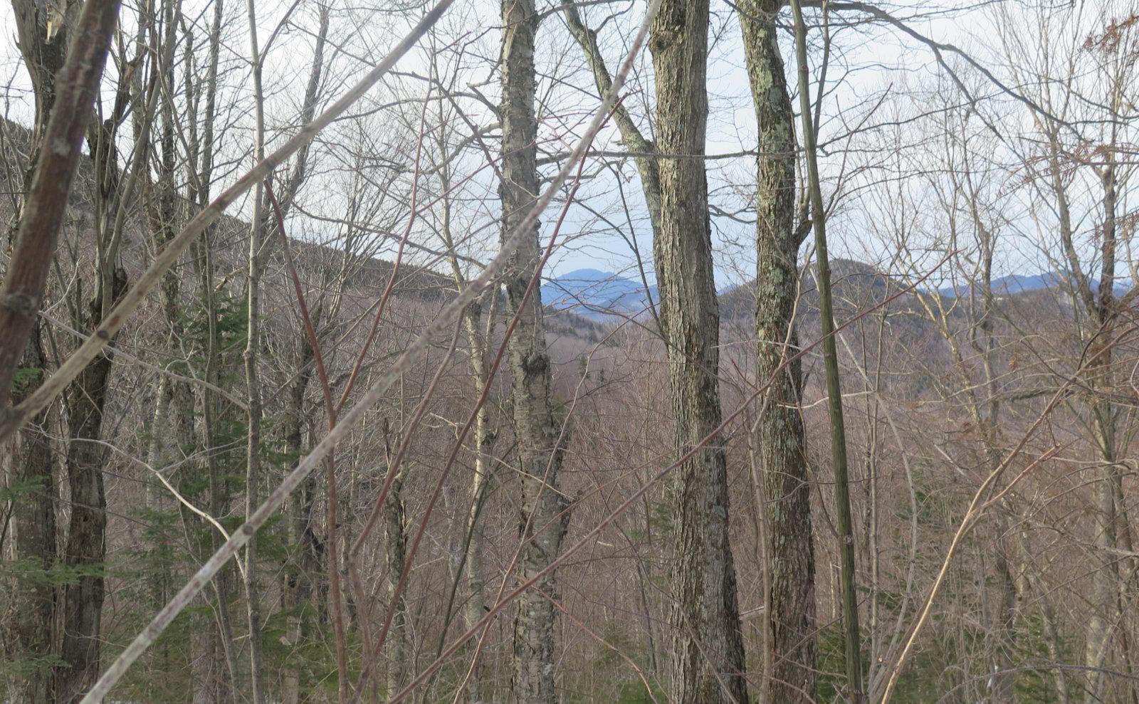 Oliverian-Trail-Carrigan-20200326