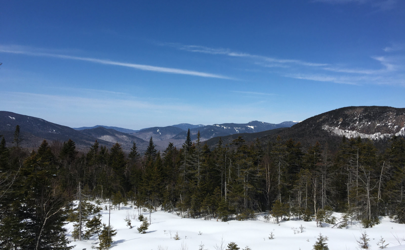 Oliverian-Trail-Mt-Flume-20200326