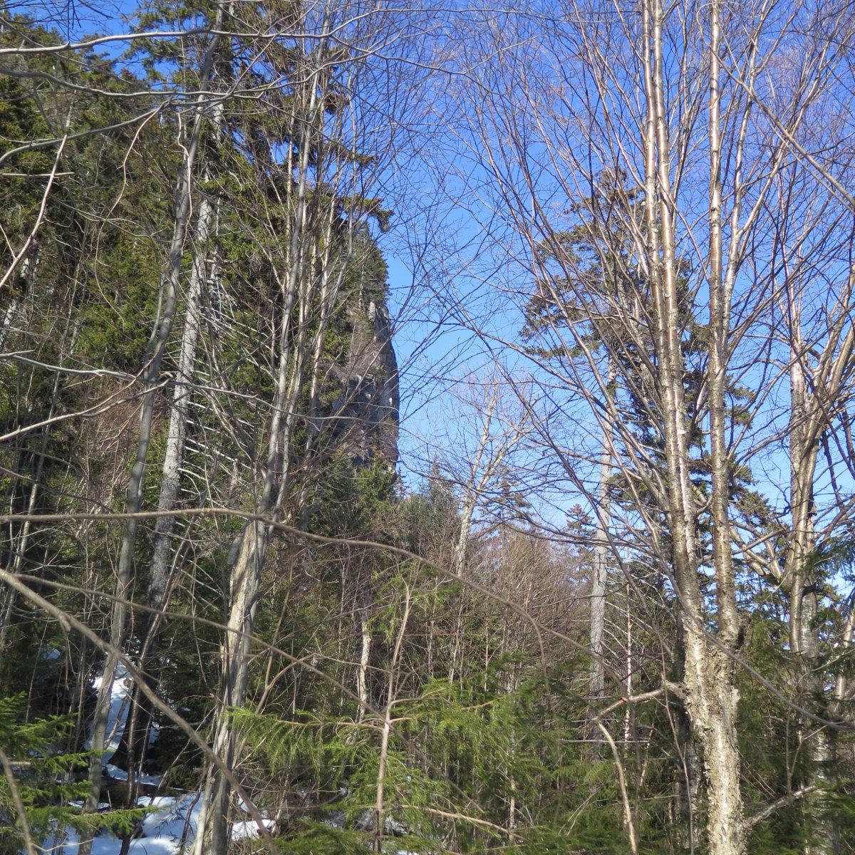 Oliverian-Trail-Square-Ledge-Cliff-20200326