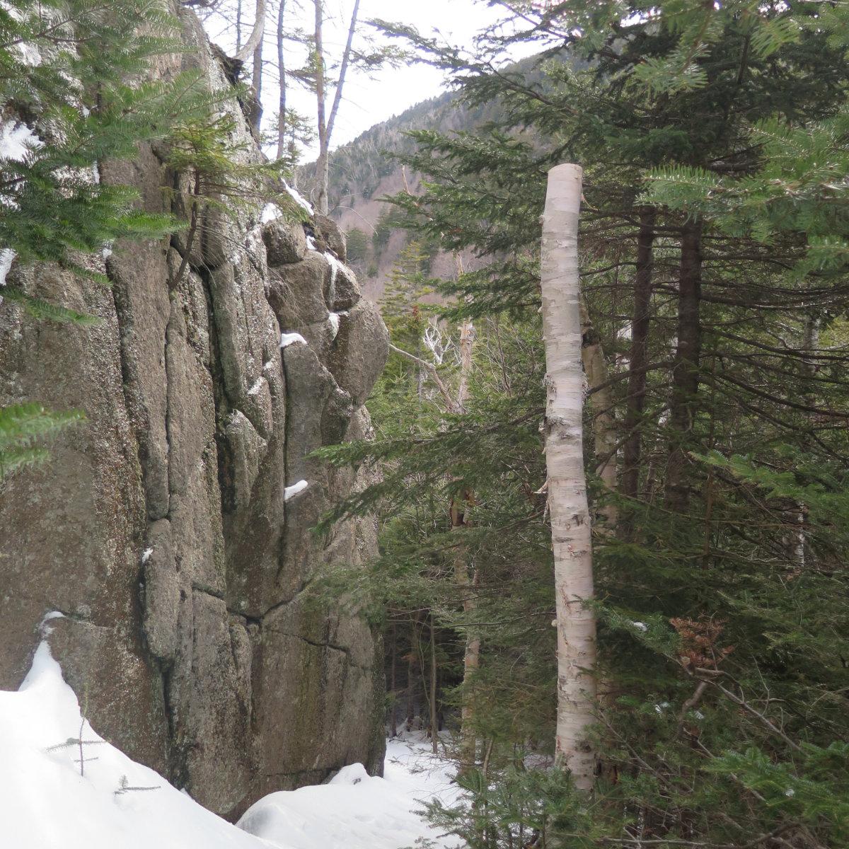 Oliverian-Trail-Square-Ledge-Granite-Wall-20200326