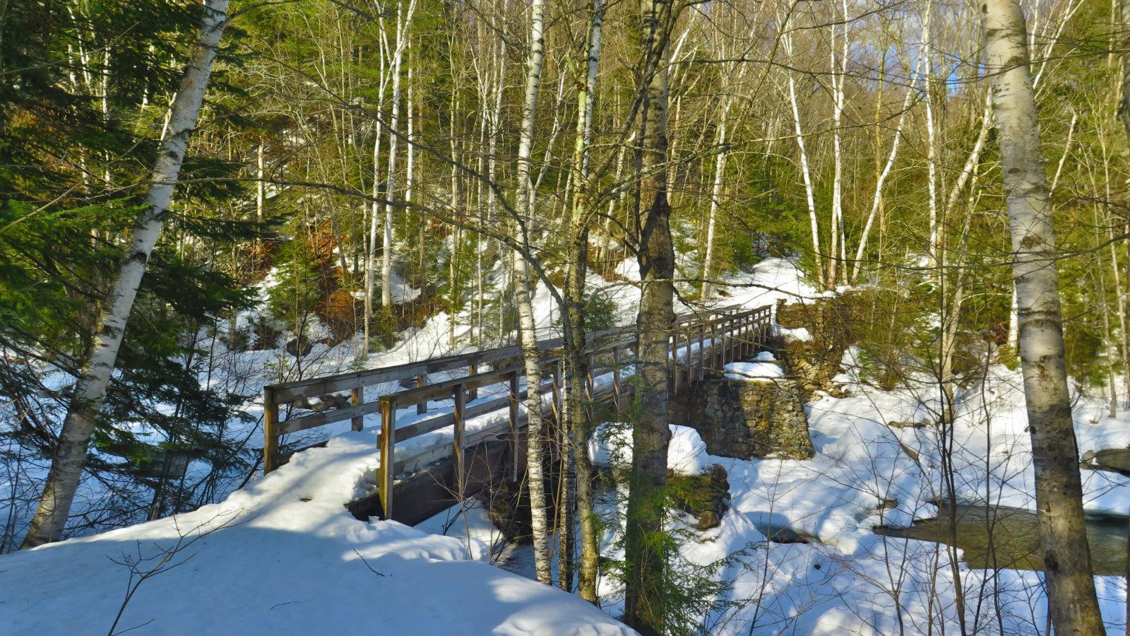 Pemi-East-Side-Franconia-Brook-Bridge-Oblique-20200303