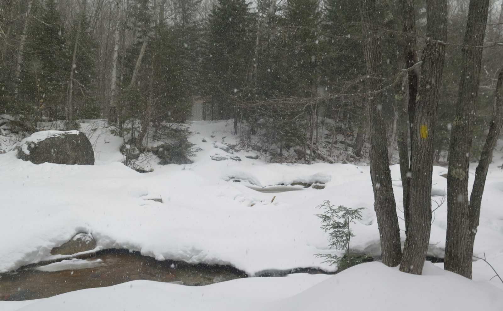 Sawyer-River-Water-Crossing-20200317