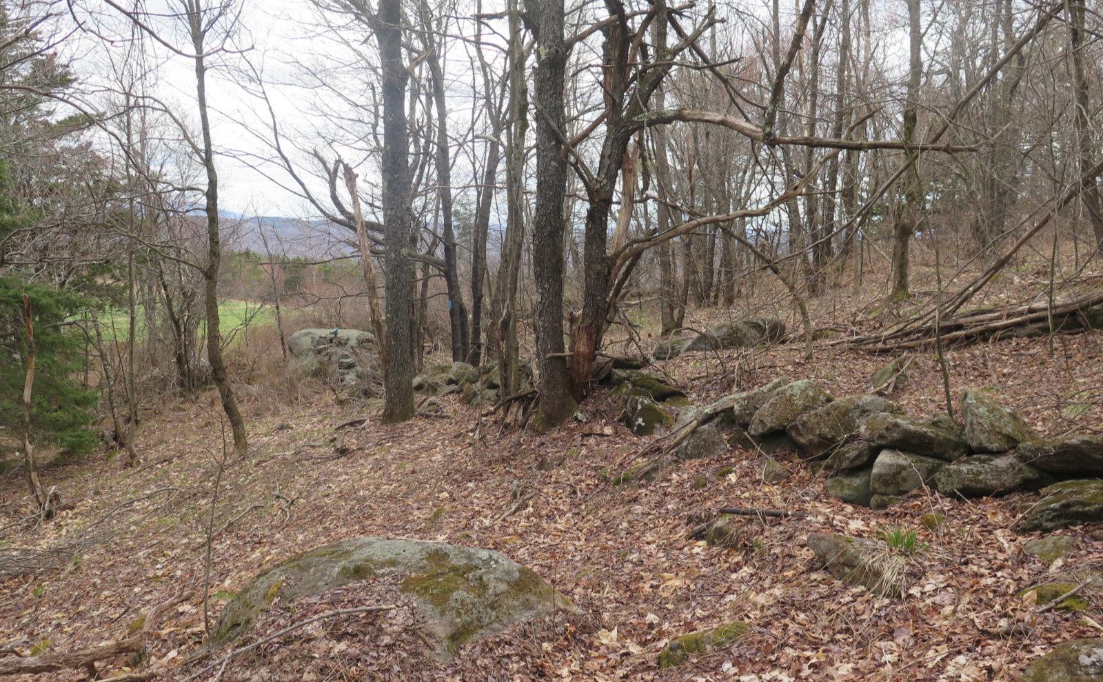 06-Pitcher-Stone-Wall-20200506