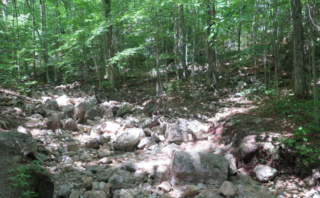 Fording Tecumseh Brook