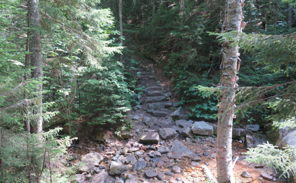 Stone steps on Tecumseh Trail, just after fording Tecumseh Brook.