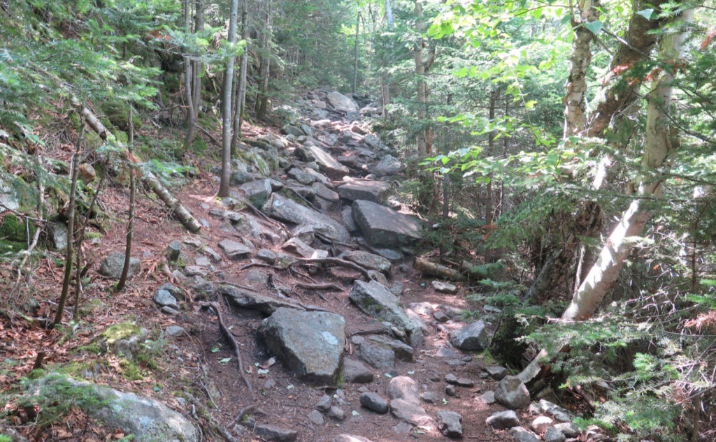 Rugged section of Tecumseh Trail.