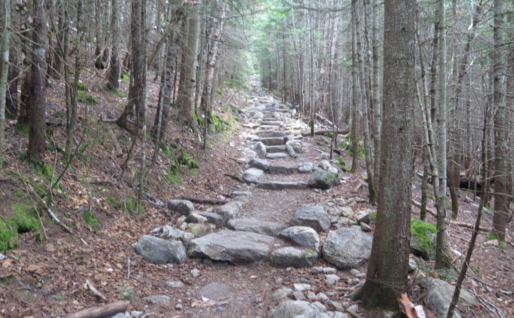 Stone steps on Tecumseh Trail, Mt Tecumseh, Waterville Valley, NH.