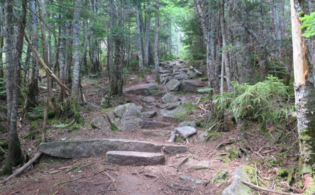 Rocks on Tecumseh Trail.